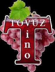 TovuzVino